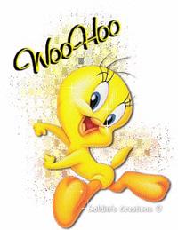 woohoo-3